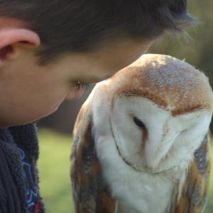 Child holding Barn Owl