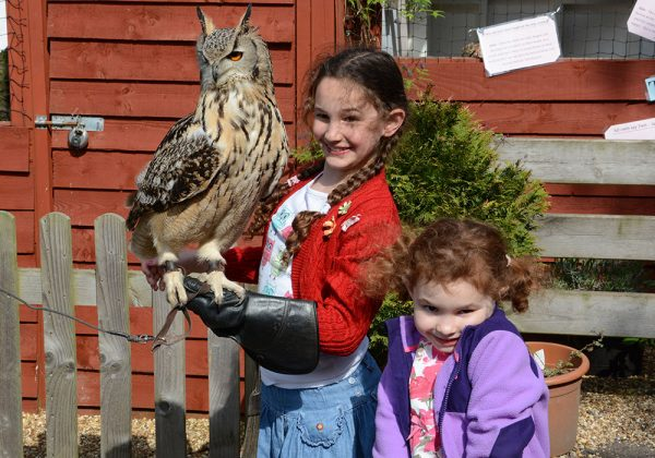 Two girls holding Indian Eagle Owl
