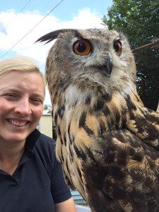 Falconer holing European Eagle Owl