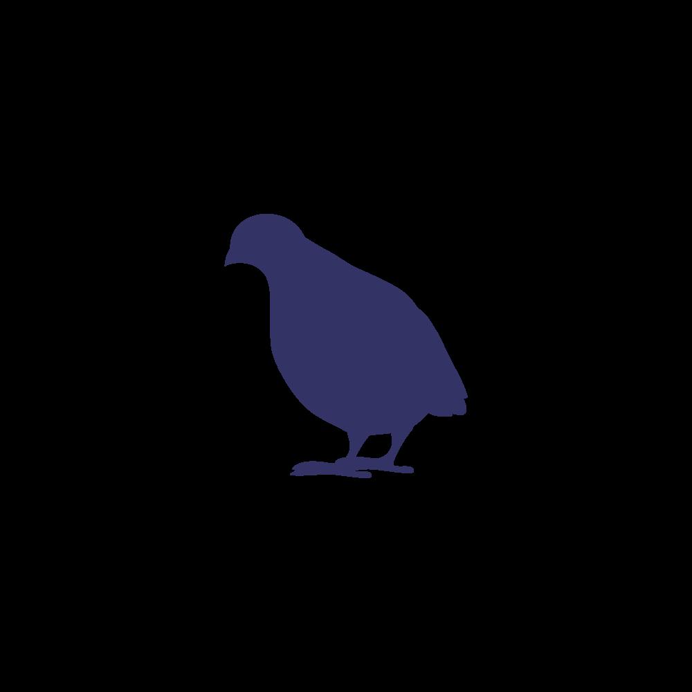 Frozen quail